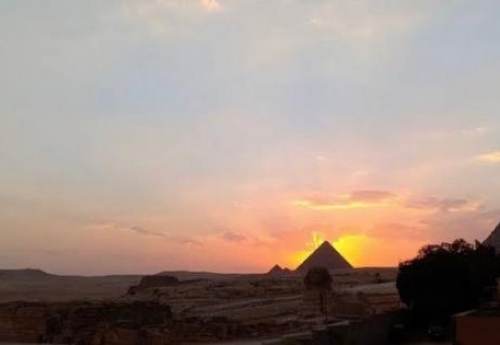 Roots is calling you to Egypt